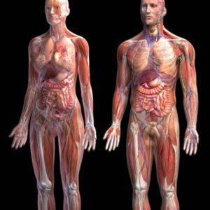 Γενική υγεία - Φόρμουλες